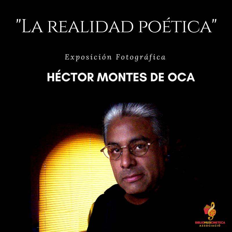La realidad poética- Héctor Montes de Oca (2)